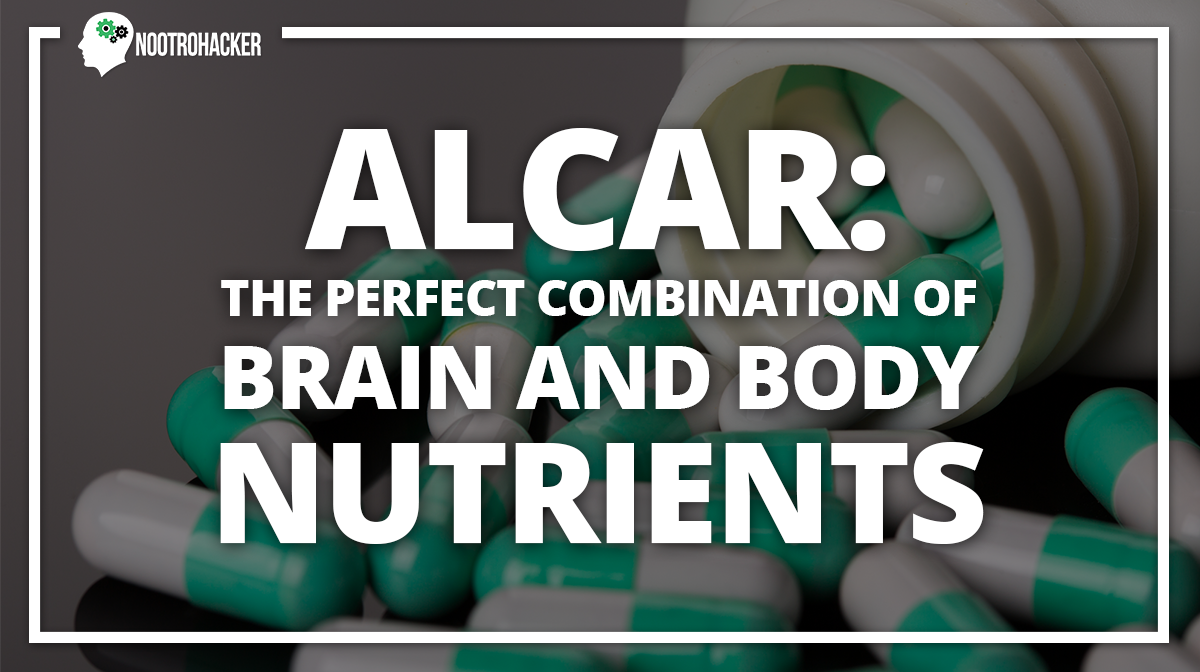 ALCAR: The Perfect Combination Of Brain And Body Nutrients